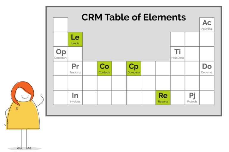 Essential CRM Elements